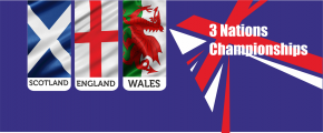 3nflags banner
